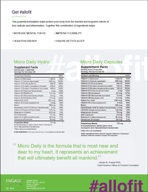 Micro Daily Brochure Page 2